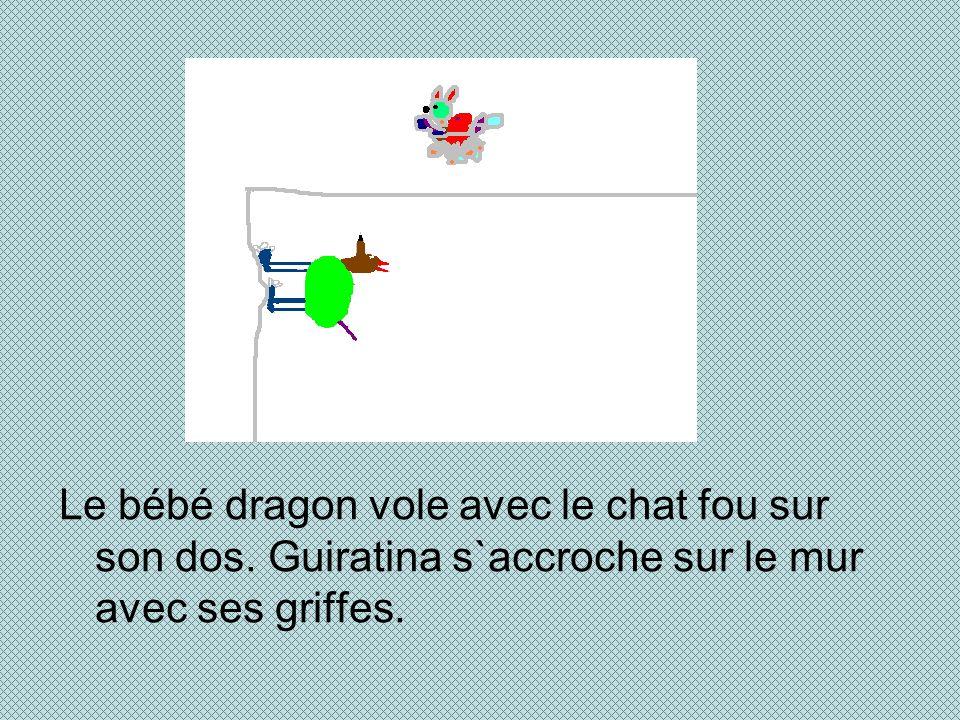 Le bébé dragon vole avec le chat fou sur son dos. Guiratina s`accroche sur le mur avec ses griffes.