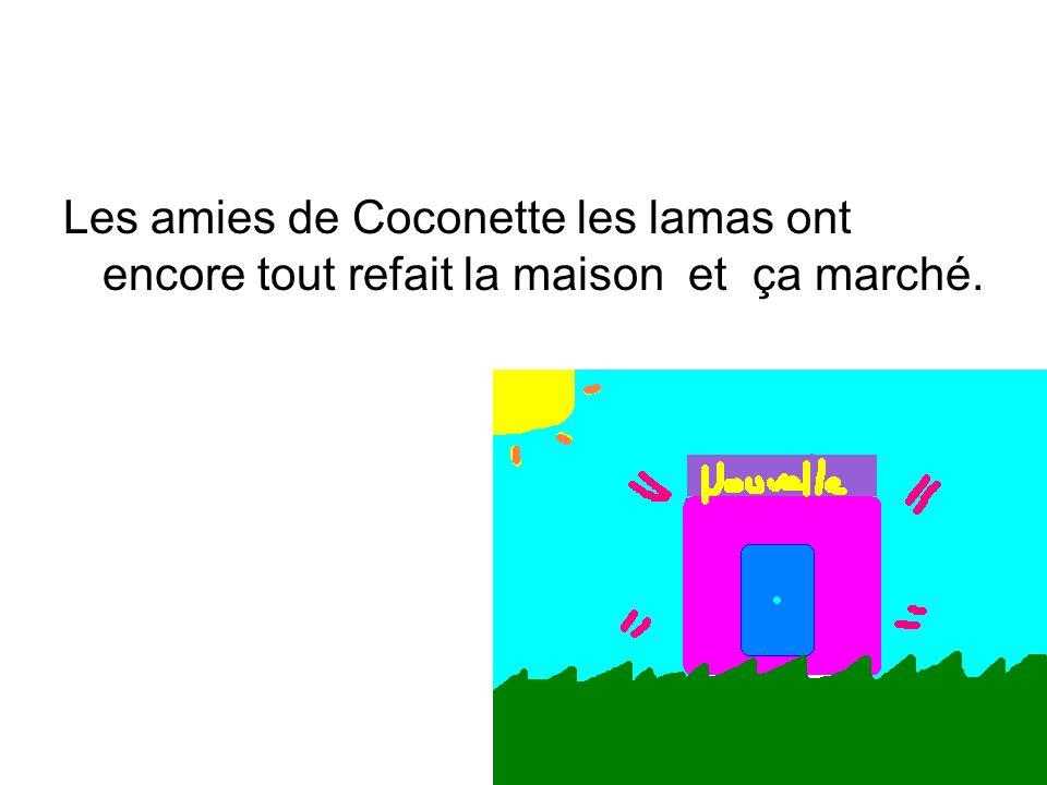 Les amies de Coconette les lamas ont encore tout refait la maison et ça marché.