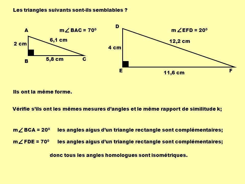 m AB m DE = m BC m EF = m AC m DF A B C D EF m BAC = 70 0 m EFD = 20 0 2 cm 5,8 cm 6,1 cm 4 cm 11,6 cm 12,2 cm 2 4 = 5,8 11,6 = 6,1 12,2 Les rapports des mesures des côtés homologues sont proportionnels.