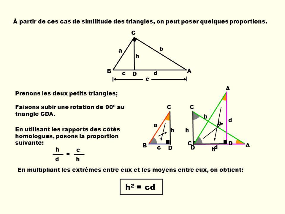 h c d h À partir de ces cas de similitude des triangles, on peut poser quelques proportions. b e c d B C D A h a B C D c h a = C A D b d h Prenons les