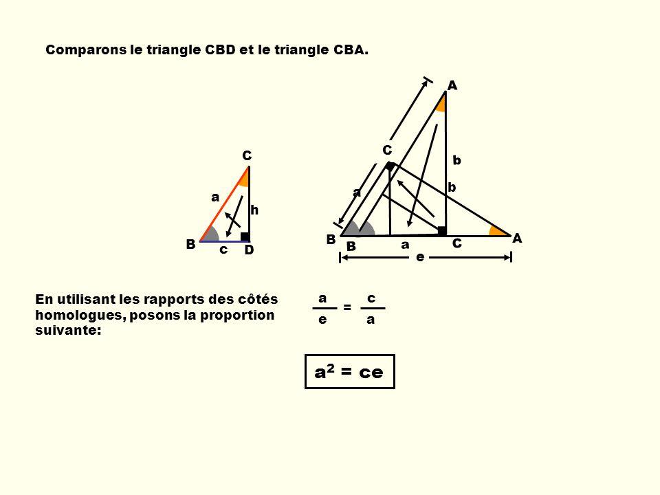 a c e a B C D c h a Ba C b A e Comparons le triangle CBD et le triangle CBA. b e B C A a = En utilisant les rapports des côtés homologues, posons la p