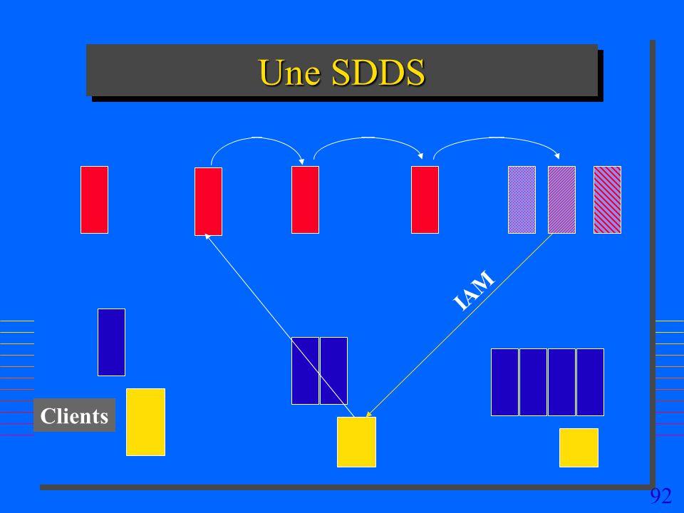 92 Une SDDS Clients IAM