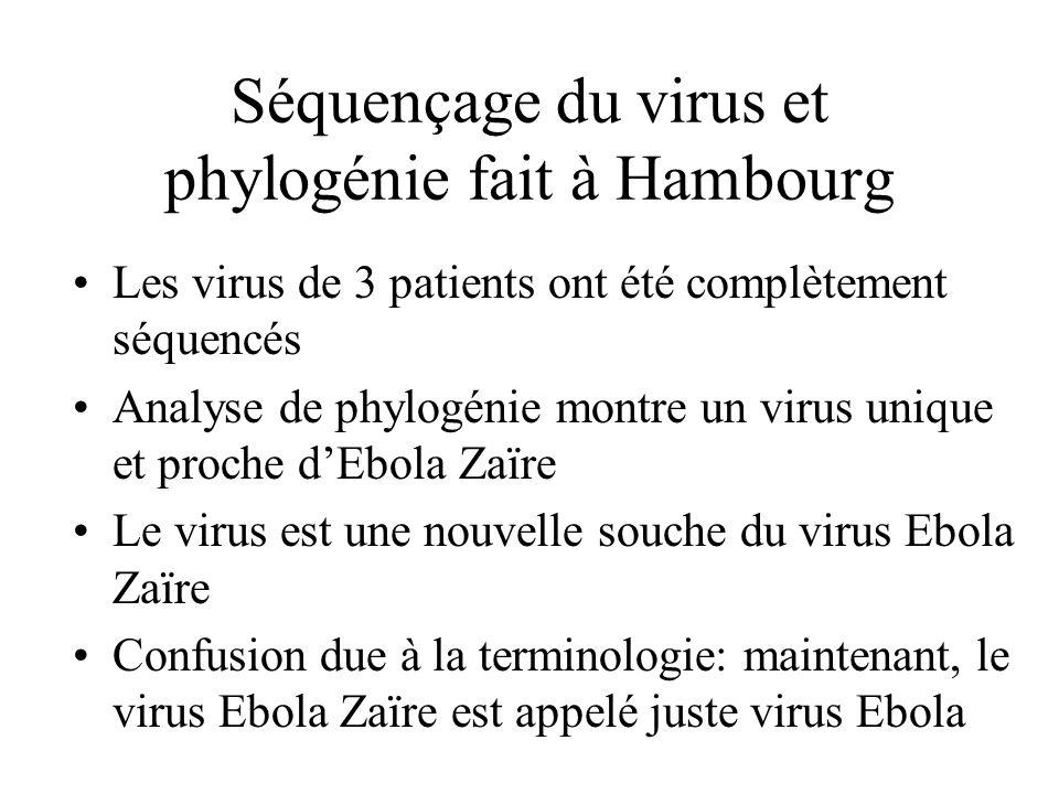 Séquençage du virus et phylogénie fait à Hambourg Les virus de 3 patients ont été complètement séquencés Analyse de phylogénie montre un virus unique