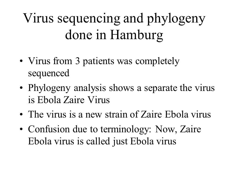 Séquençage du virus et phylogénie fait à Hambourg Les virus de 3 patients ont été complètement séquencés Analyse de phylogénie montre un virus unique et proche dEbola Zaïre Le virus est une nouvelle souche du virus Ebola Zaïre Confusion due à la terminologie: maintenant, le virus Ebola Zaïre est appelé juste virus Ebola