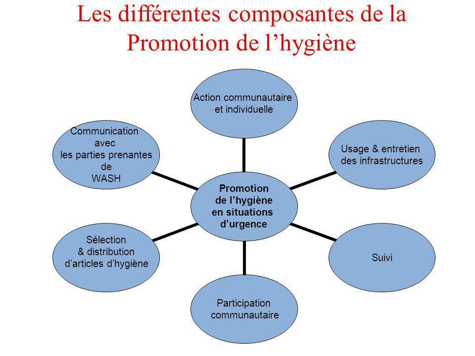 Les différentes composantes de la Promotion de lhygiène Promotion de lhygiène en situations durgence Action communautaire et individuelle Usage & entr