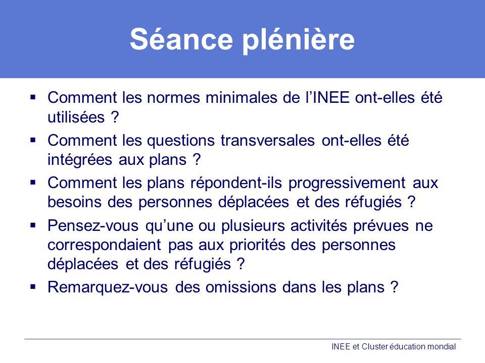 Séance plénière Comment les normes minimales de lINEE ont-elles été utilisées .