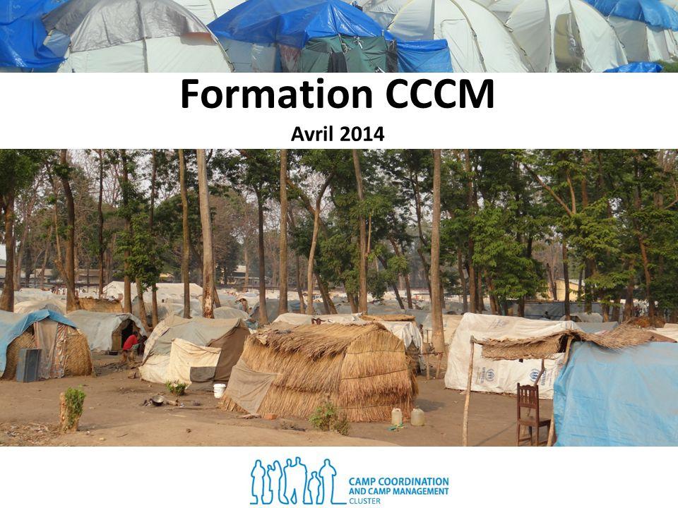 Objectifs de la formation: Décrire les caractéristiques dun site Expliquer les objectifs du cluster CCCM et le rôle des principaux acteurs Définir les principes et les fondements du cluster CCCM