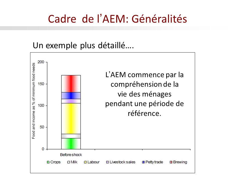 LAEM commence par la compréhension de la vie des ménages pendant une période de référence. Un exemple plus détaillé…. Cadre de lAEM: Généralités
