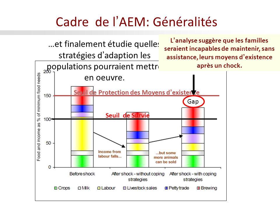 Seuil de Survie Seuil de Protection des Moyens dexistence Gap …et finalement étudie quelles stratégies dadaption les populations pourraient mettre en oeuvre.
