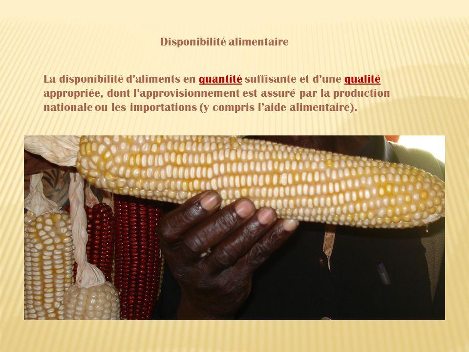La disponibilité daliments en quantité suffisante et dune qualité appropriée, dont lapprovisionnement est assuré par la production nationale ou les importations (y compris laide alimentaire).