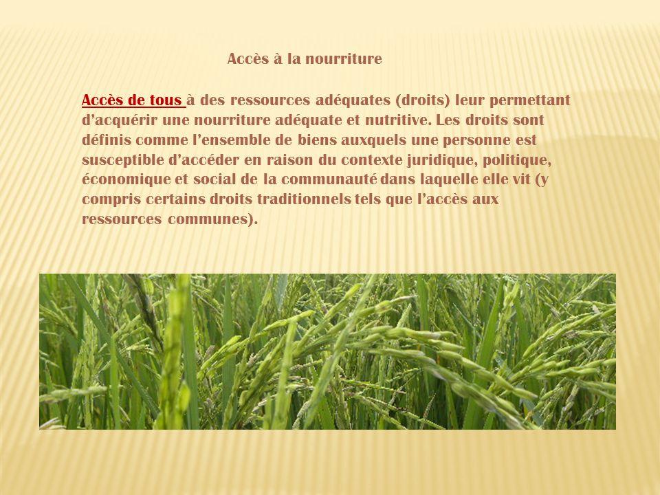 Accès de tous à des ressources adéquates (droits) leur permettant dacquérir une nourriture adéquate et nutritive.