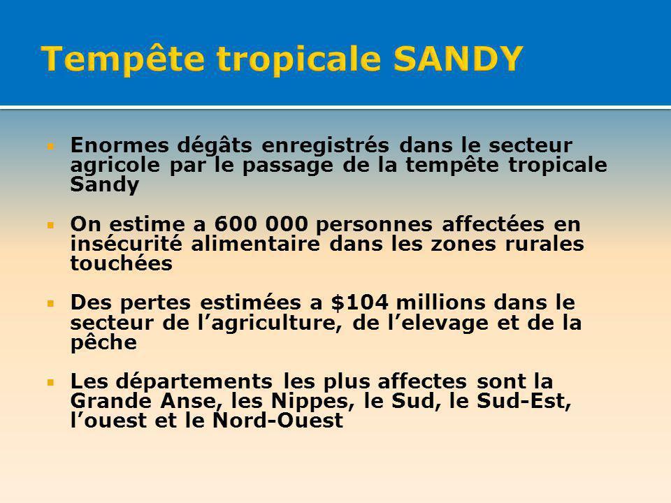 Enormes dégâts enregistrés dans le secteur agricole par le passage de la tempête tropicale Sandy On estime a 600 000 personnes affectées en insécurité