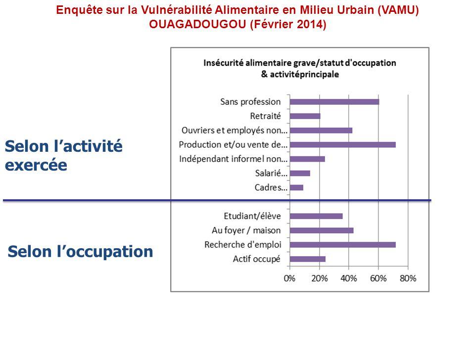 Selon loccupation Selon lactivité exercée Enquête sur la Vulnérabilité Alimentaire en Milieu Urbain (VAMU) OUAGADOUGOU (Février 2014)