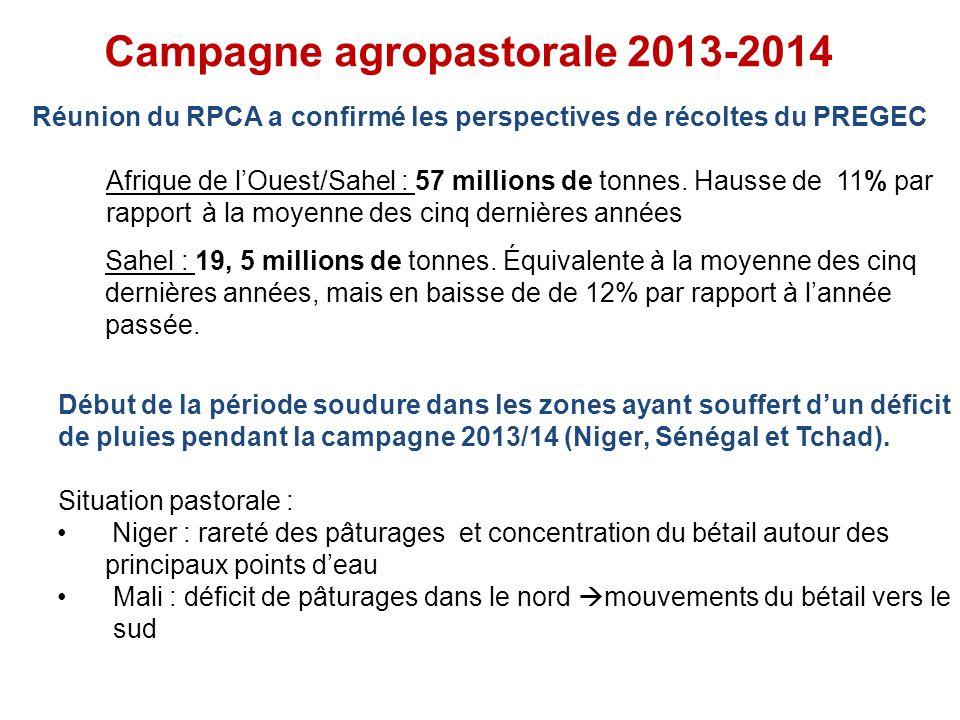Réunion du RPCA a confirmé les perspectives de récoltes du PREGEC Afrique de lOuest/Sahel : 57 millions de tonnes.