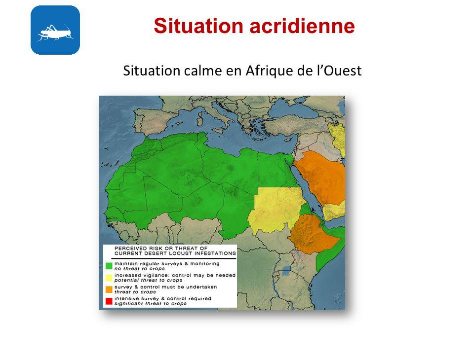 Situation acridienne Situation calme en Afrique de lOuest