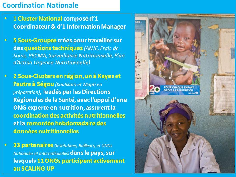 Coordination Nationale 1 Cluster National composé d1 Coordinateur & d1 Information Manager 5 Sous-Groupes crées pour travailler sur des questions techniques (ANJE, Frais de Soins, PECMA, Surveillance Nutritionnelle, Plan dAction Urgence Nutritionnelle) 2 Sous-Clusters en région, un à Kayes et lautre à Ségou (Koulikoro et Mopti en préparation), leadés par les Directions Régionales de la Santé, avec lappui dune ONG experte en nutrition, assurent la coordination des activités nutritionnelles et la remontée hebdomadaire des données nutritionnelles 33 partenaires (Institutions, Bailleurs, et ONGs Nationales et Internationales) dans le pays, sur lesquels 11 ONGs participent activement au SCALING UP