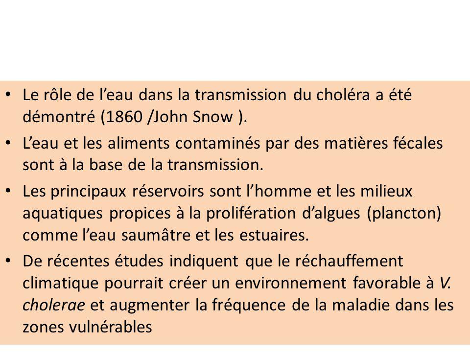 Le rôle de leau dans la transmission du choléra a été démontré (1860 /John Snow ). Leau et les aliments contaminés par des matières fécales sont à la