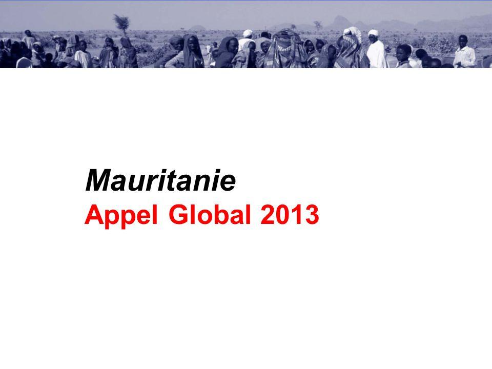 Mauritanie Appel Global 2013