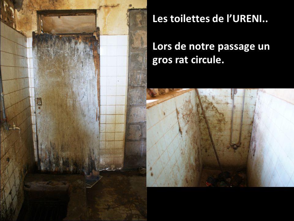 Les toilettes de lURENI.. Lors de notre passage un gros rat circule.