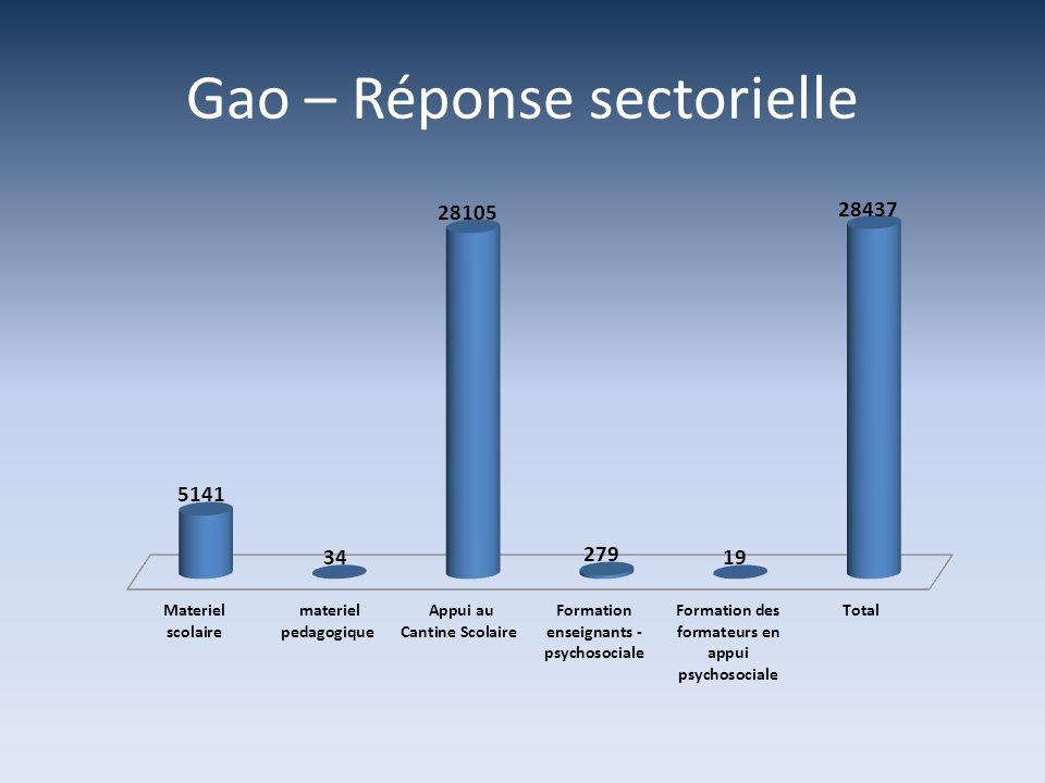 Gao – Réponse sectorielle