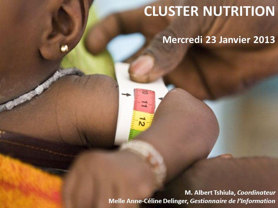 CLUSTER NUTRITION Mercredi 23 Janvier 2013 M. Albert Tshiula, Coordinateur Melle Anne-Céline Delinger, Gestionnaire de lInformation