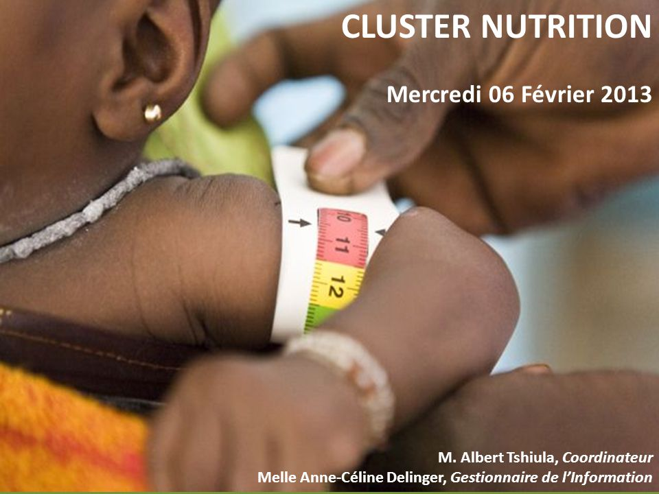 CLUSTER NUTRITION Mercredi 06 Février 2013 M.
