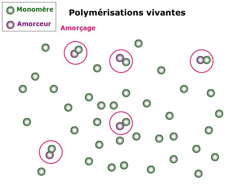 Polymérisations vivantes Monomère Amorceur Amorçage