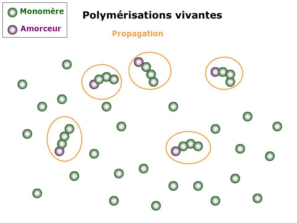 Propagation Polymérisations vivantes Monomère Amorceur