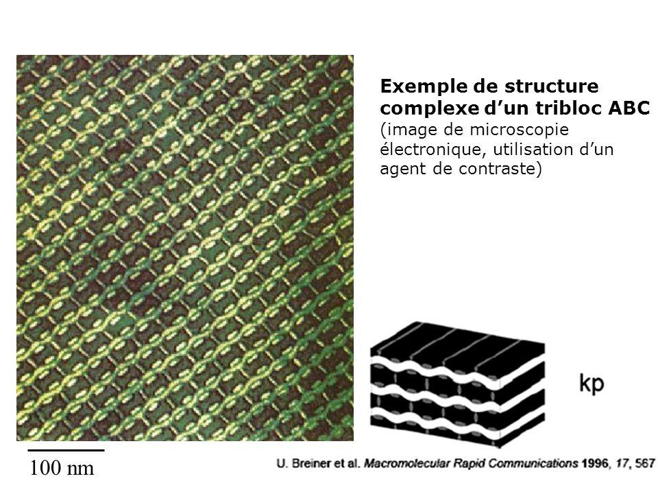 Exemple de structure complexe dun tribloc ABC (image de microscopie électronique, utilisation dun agent de contraste) 100 nm