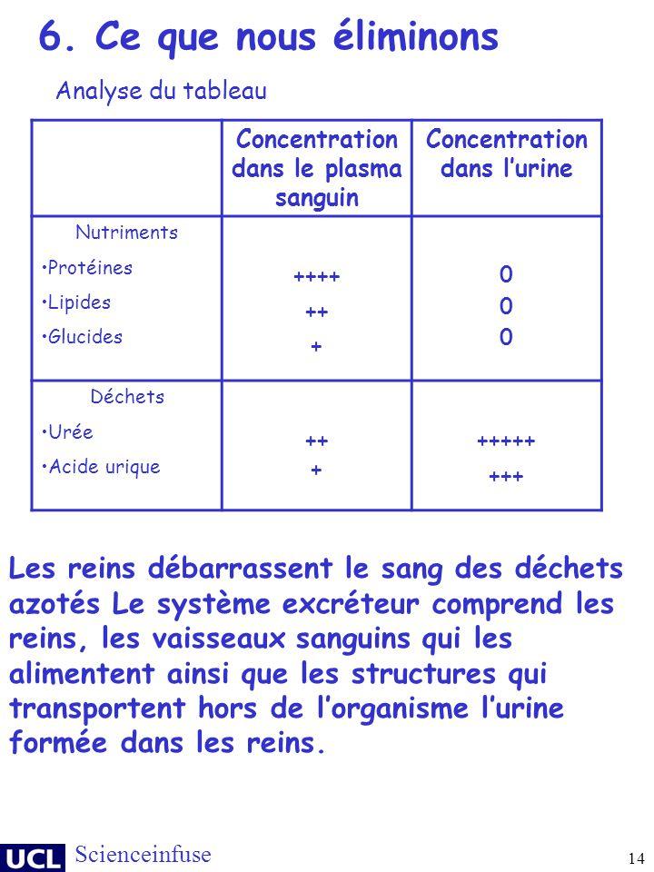 14 Scienceinfuse Concentration dans le plasma sanguin Concentration dans lurine Nutriments Protéines Lipides Glucides ++++ ++ + 000000 Déchets Urée Ac