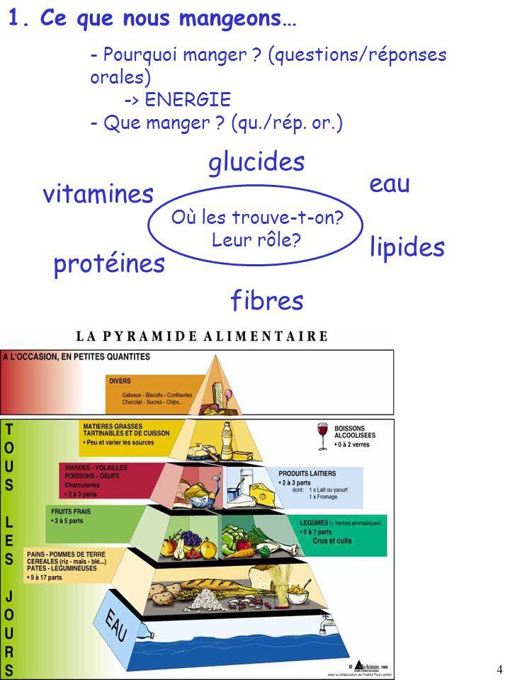4 1. Ce que nous mangeons… protéines lipides glucides vitamines fibres eau Où les trouve-t-on? Leur rôle? - Pourquoi manger ? (questions/réponses oral