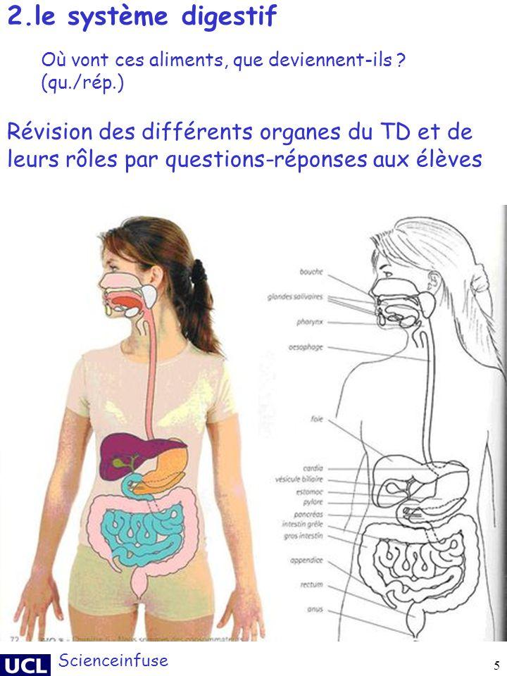 5 2.le système digestif Scienceinfuse Révision des différents organes du TD et de leurs rôles par questions-réponses aux élèves Où vont ces aliments,