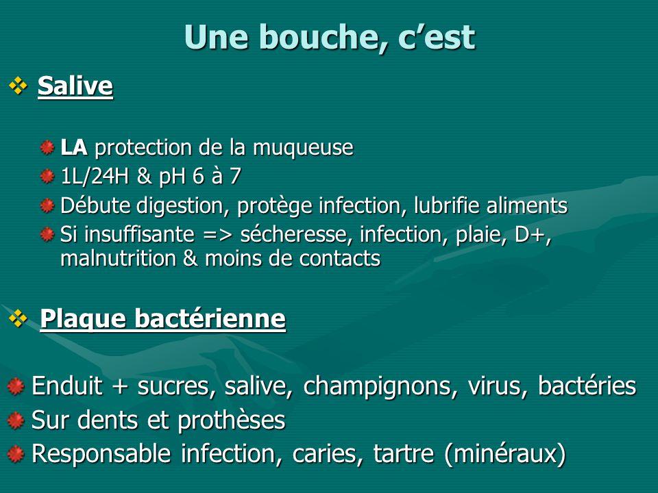 A propos du soin de bouche Ne pas loublier !!!Ne pas loublier !!.