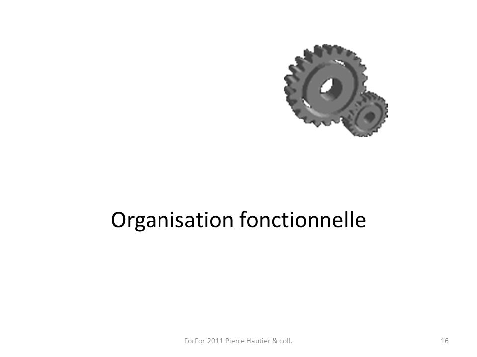 Organisation fonctionnelle ForFor 2011 Pierre Hautier & coll.16