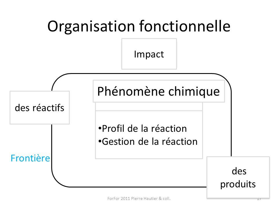 Organisation fonctionnelle ForFor 2011 Pierre Hautier & coll.17 Système But Flux Entrées Sorties Impact Phénomène chimique des réactifs des produits P