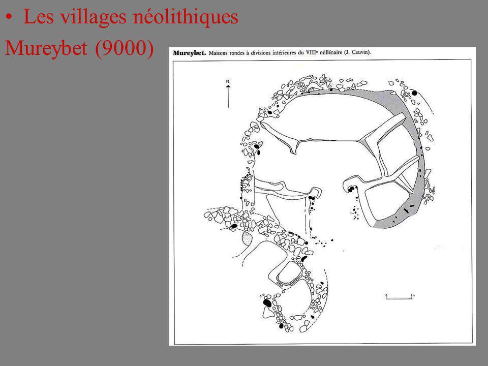 Les villages néolithiques Mureybet (9000)