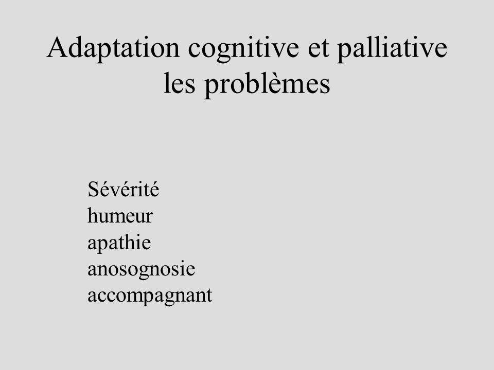 Adaptation cognitive et palliative les problèmes Sévérité humeur apathie anosognosie accompagnant