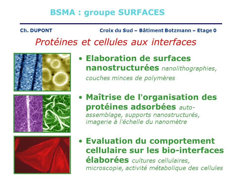 Croix du Sud – Bâtiment Botzmann – Etage 0Ch. DUPONT Protéines et cellules aux interfaces Elaboration de surfaces nanostructurées nanolithographies, c