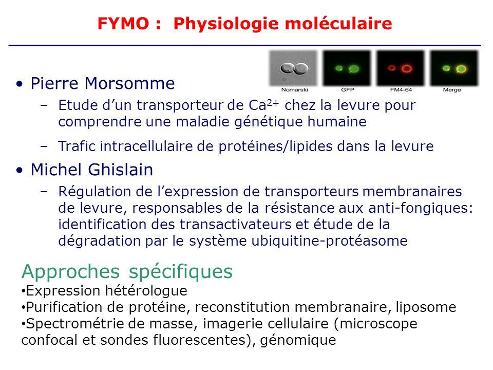 FYMO : Physiologie moléculaire Pierre Morsomme –Etude dun transporteur de Ca 2+ chez la levure pour comprendre une maladie génétique humaine –Trafic i