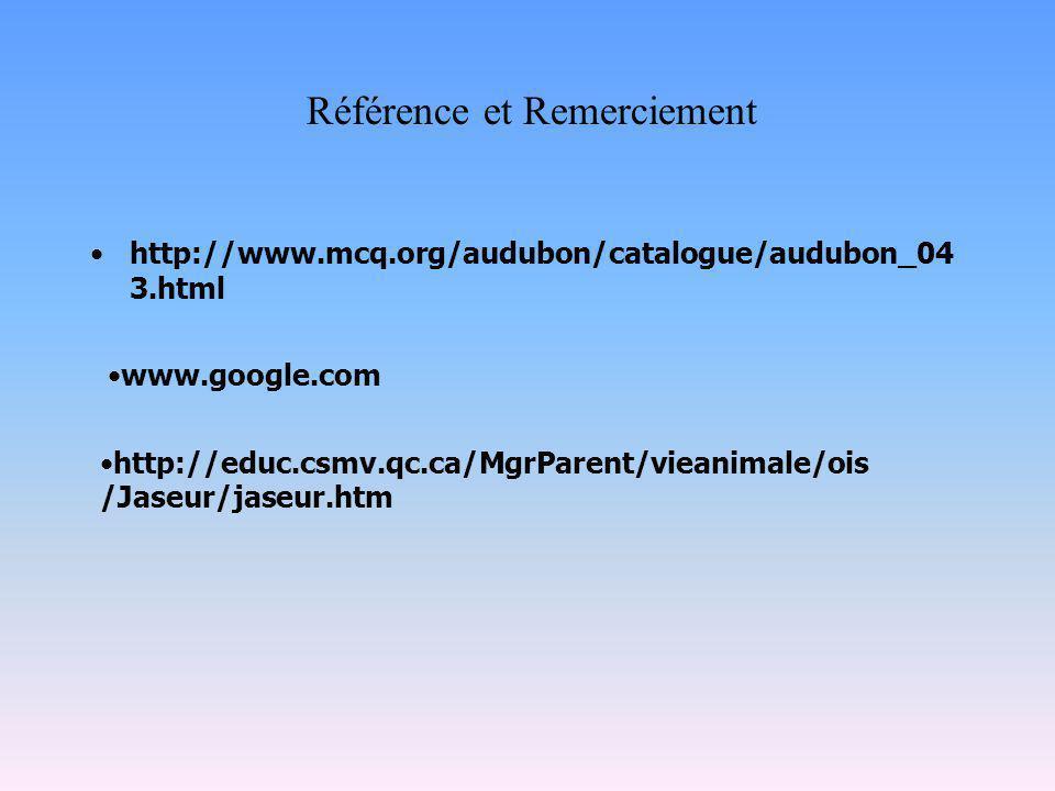http://www.mcq.org/audubon/catalogue/audubon_04 3.html Référence et Remerciement www.google.com http://educ.csmv.qc.ca/MgrParent/vieanimale/ois /Jaseur/jaseur.htm