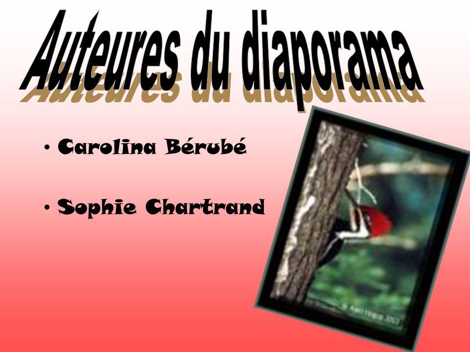 Carolina Bérubé Sophie Chartrand