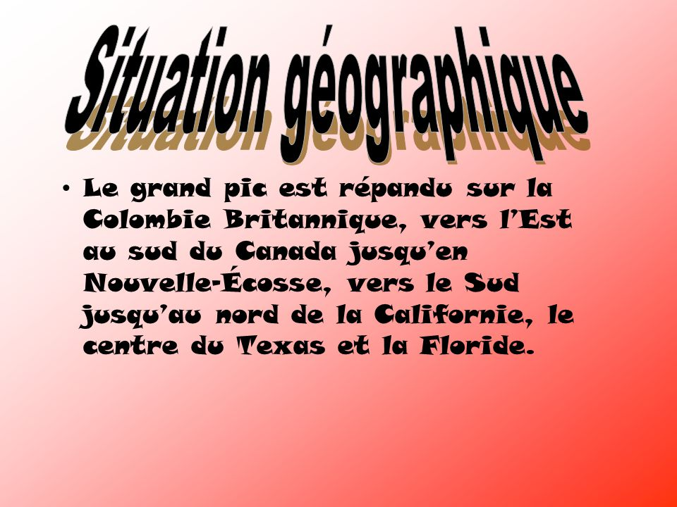 Le grand pic est répandu sur la Colombie Britannique, vers lEst au sud du Canada jusquen Nouvelle-Écosse, vers le Sud jusquau nord de la Californie, le centre du Texas et la Floride.
