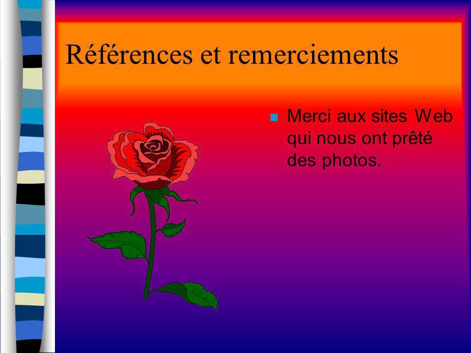 Références et remerciements n Merci aux sites Web qui nous ont prêté des photos.