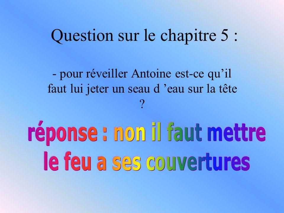 Question du chapitre 4 : - Comment était la chambre d Antoine quand il ouvrit l œil ?