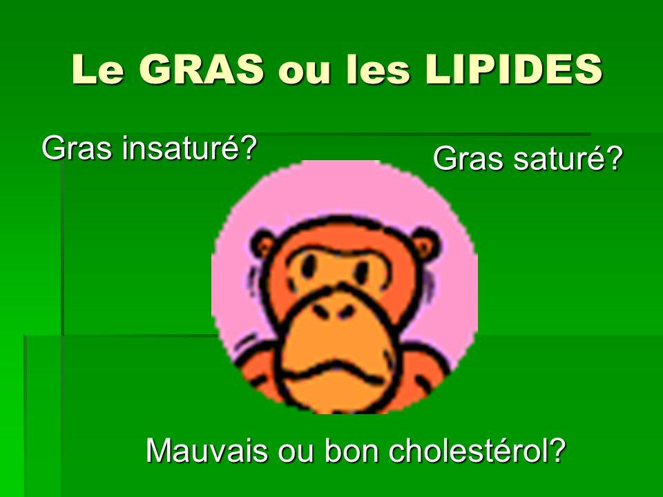 Le GRAS ou les LIPIDES Gras saturé? Gras insaturé? Mauvais ou bon cholestérol?