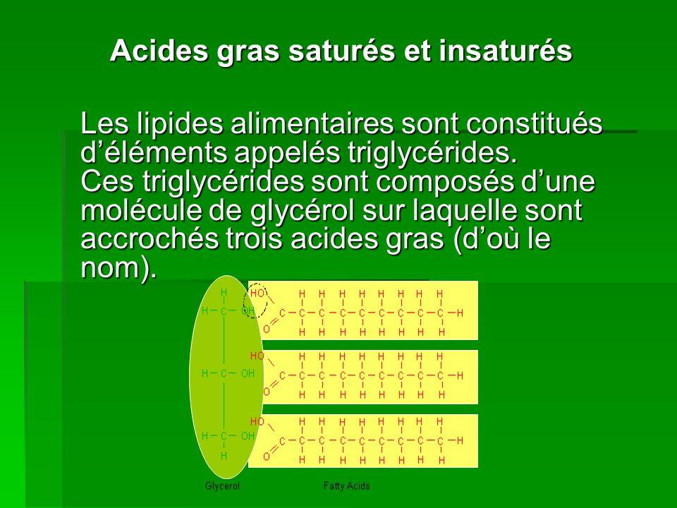 Acides gras saturés et insaturés Les lipides alimentaires sont constitués déléments appelés triglycérides.