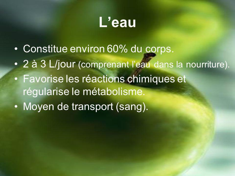 Leau Constitue environ 60% du corps.2 à 3 L/jour (comprenant leau dans la nourriture).