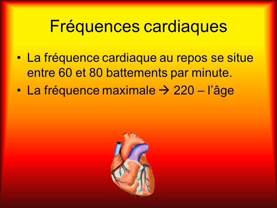 Fréquences cardiaques La fréquence cardiaque au repos se situe entre 60 et 80 battements par minute. La fréquence maximale 220 – lâge