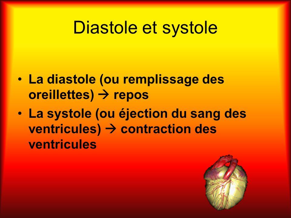 Diastole et systole La diastole (ou remplissage des oreillettes) repos La systole (ou éjection du sang des ventricules) contraction des ventricules
