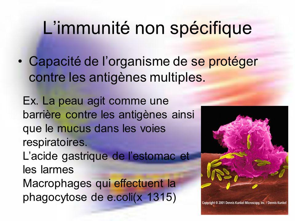 Limmunité non spécifique Capacité de lorganisme de se protéger contre les antigènes multiples.